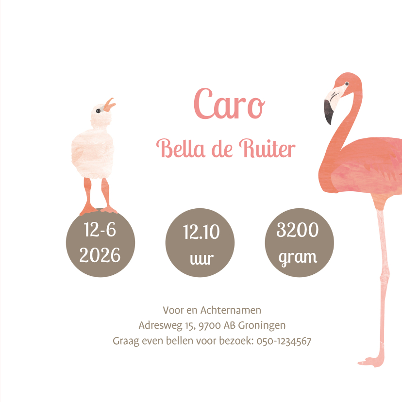 Flamingo geboortekaartje 3