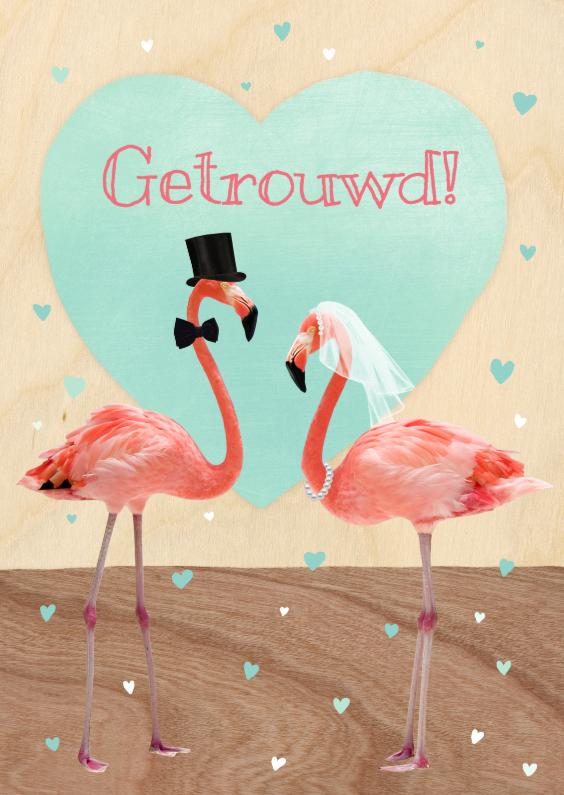 flamingo koppel  1
