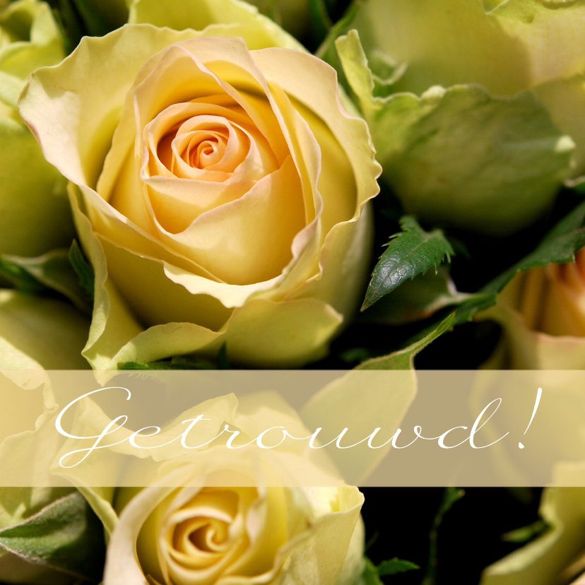 Fotokaart rozen getrouwd 1
