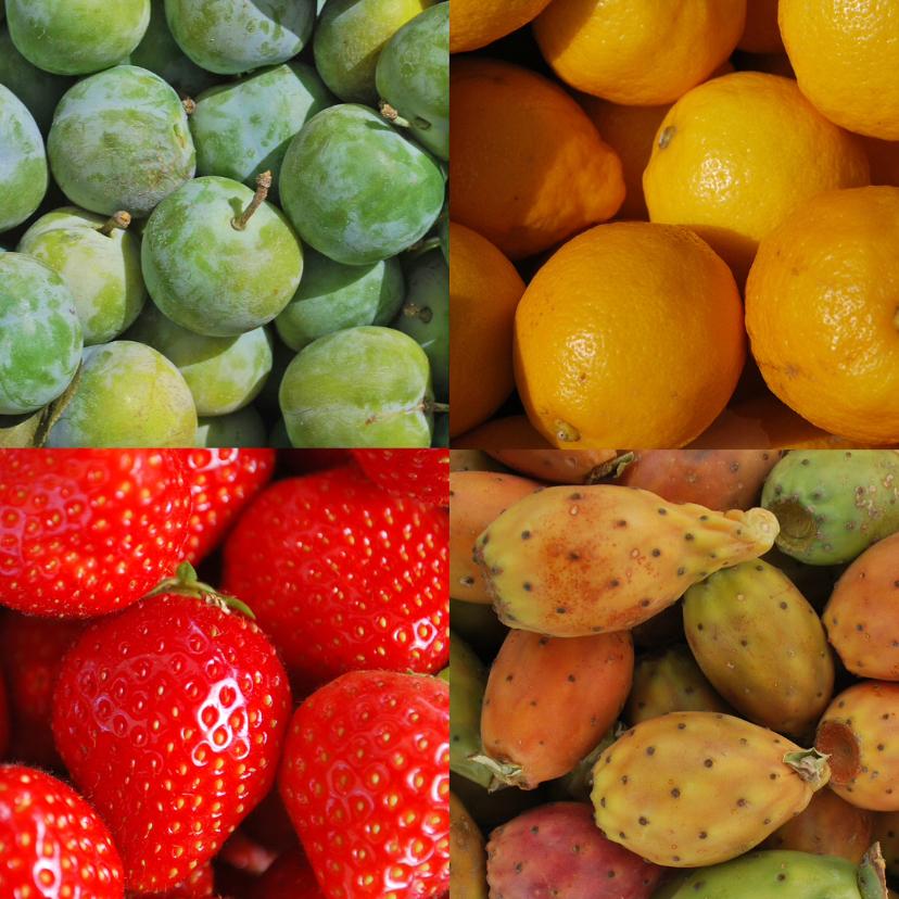 Fruitkaart 1