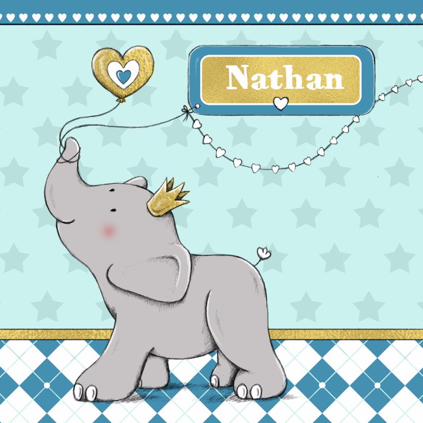 Geboorte jongen olifant goud-IH 1