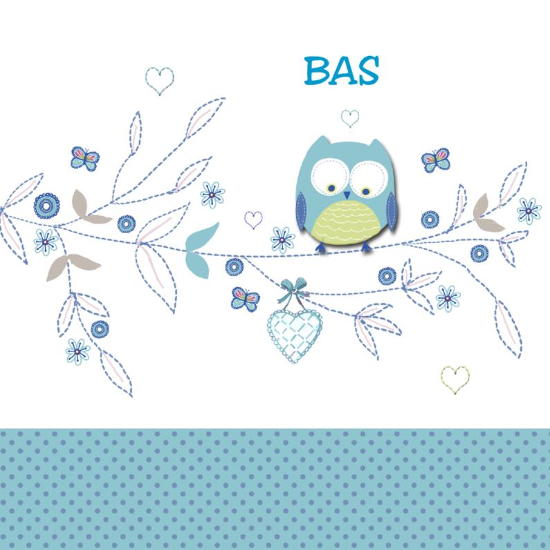 geboorte jongen uiltje blauw 1
