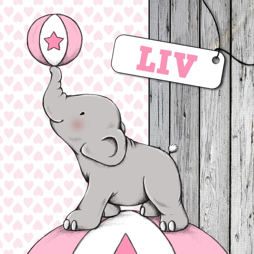 Geboorte meisje olifant bal - IH 1