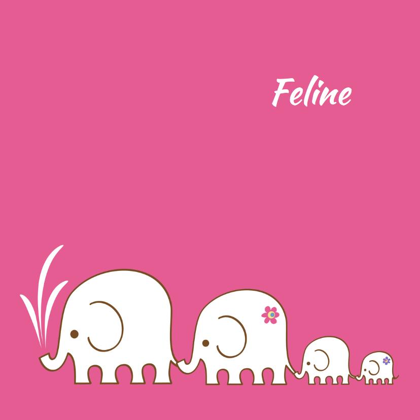 Geboorte Olifant-2e dochter-PF 1