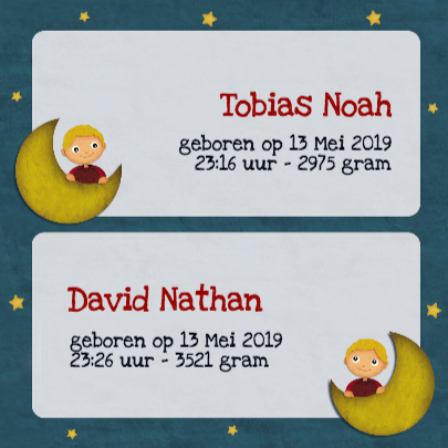 Geboorte Tweeling Jongens Maan 3