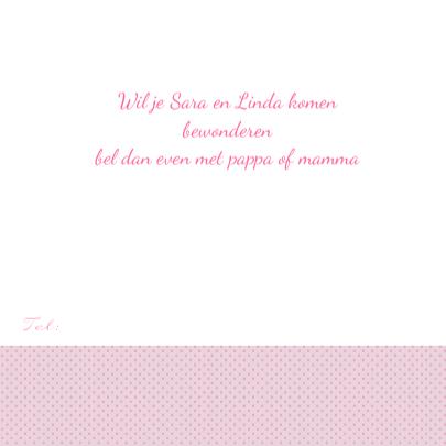 geboorte tweeling uiltjes tak roze 3