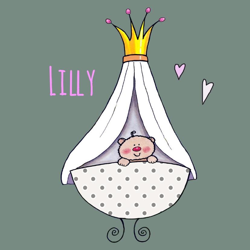 Geboortekaart prinses lief 1