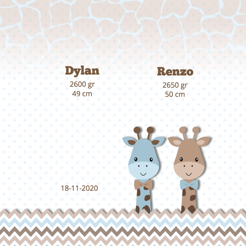 Geboortekaart tweeling giraf 2