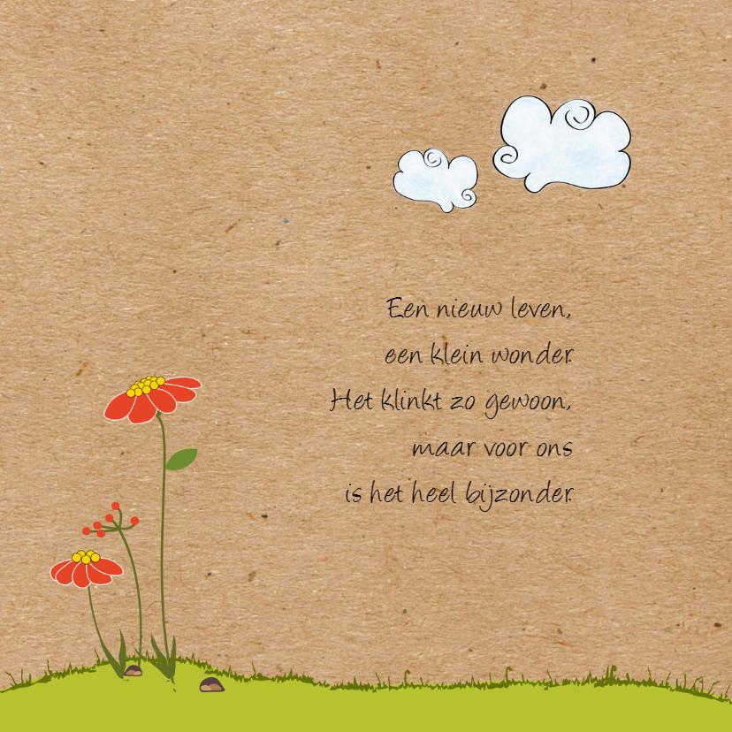 Geboortekaartje bijtje met wolk 2