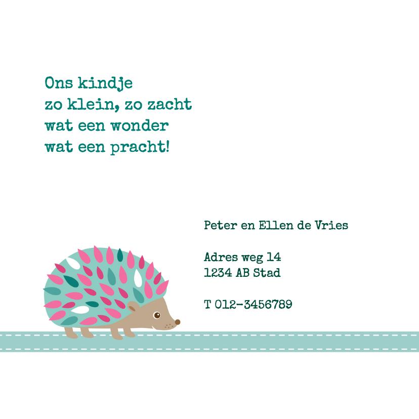 Geboortekaartje Egel Anna - HB 2