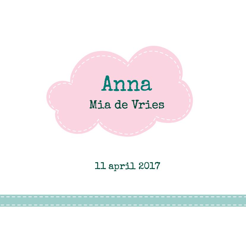 Geboortekaartje Egel Anna - HB 3