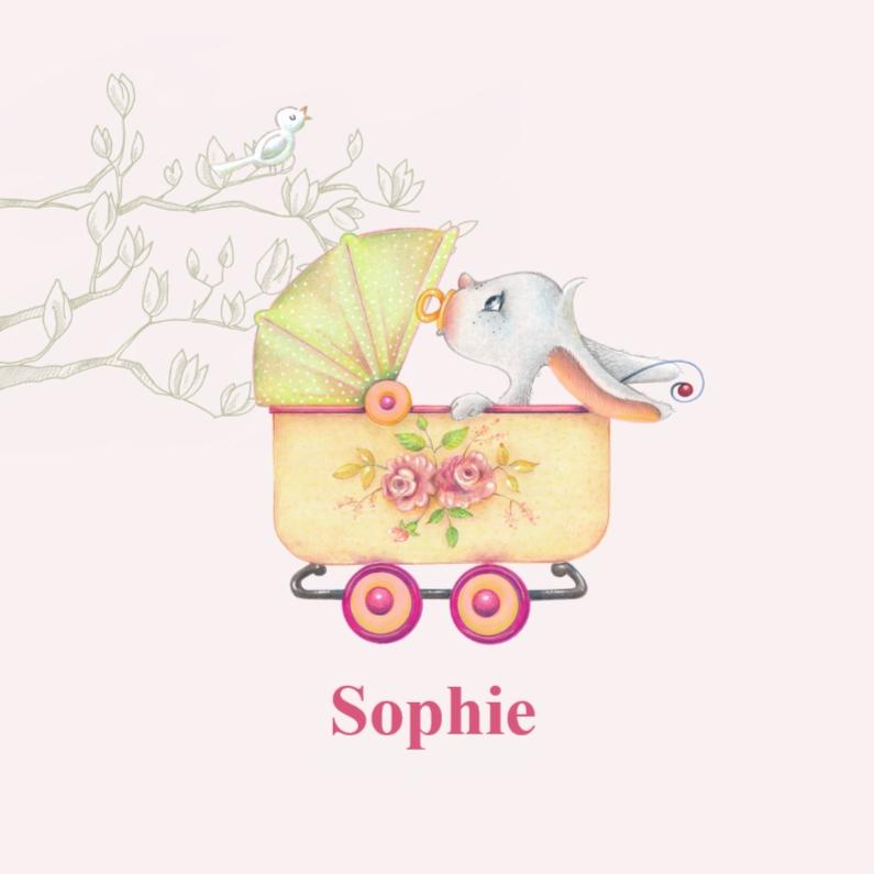 Geboortekaartje haas wandelwagen 1