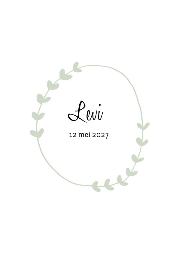 Geboortekaartje Levi - HM 1