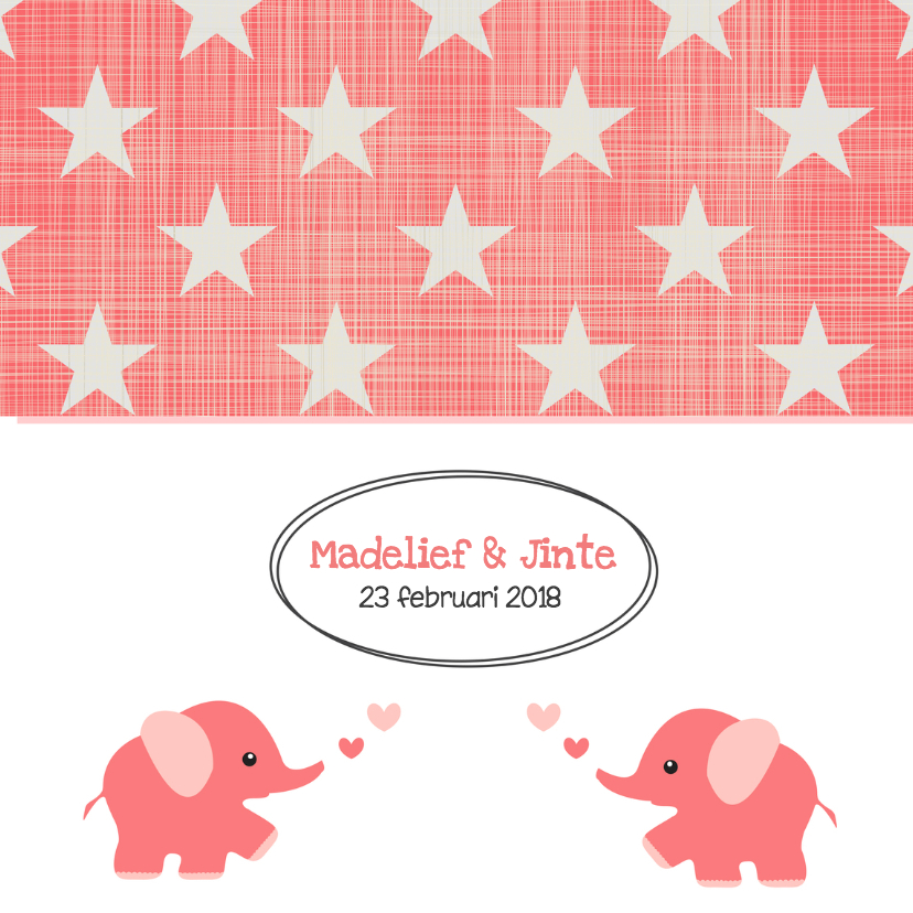 Geboortekaartje Madelief & Jinte 1