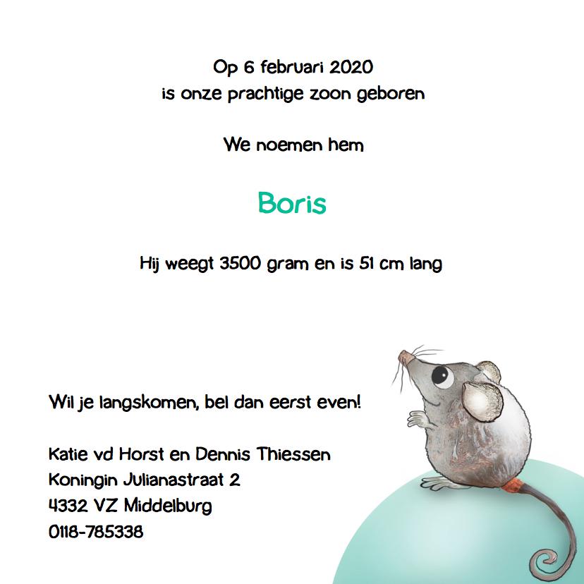 Geboortekaartje Muis met Flesje 3