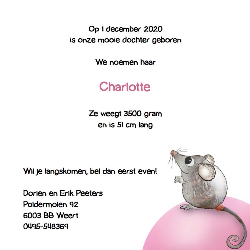 Geboortekaartje Muisje Charlotte 3