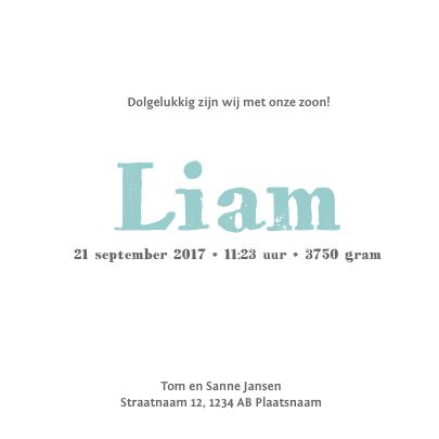 Geboortekaartje - Stijgerhout - blauw 3