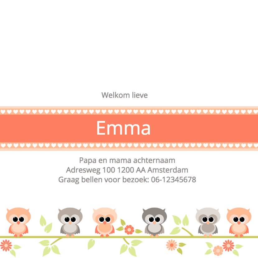 Geboortekaartje uiltjes Emma 3
