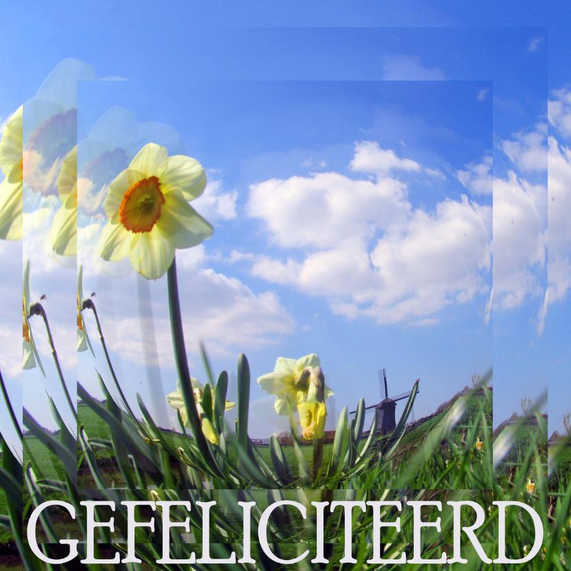 GEFELICITEERD landschap 1
