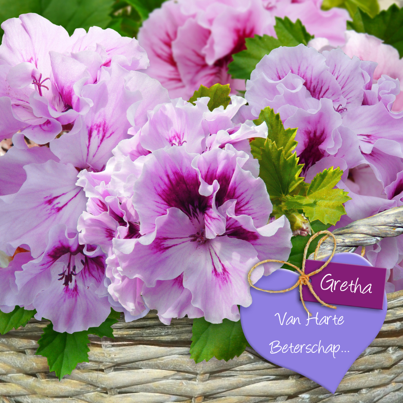Geraniums in mand met hart Beterschap 1