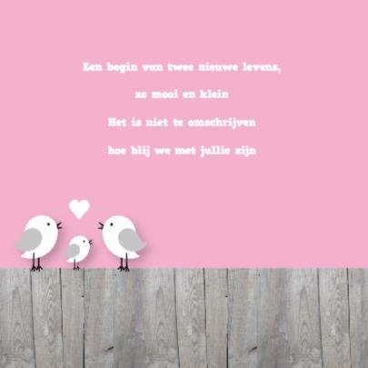 Happy Birds Tweeling Meisjes 2