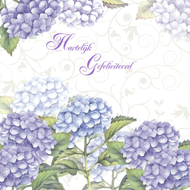 Hartelijk Gefeliciteerd hortensia 1