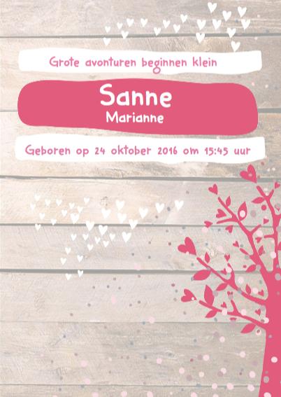 Hip geboortekaartje feest Sanne 3