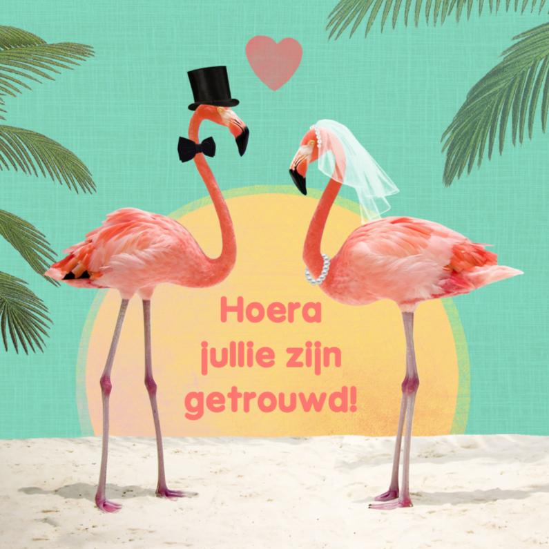 huwelijk flamingos 1