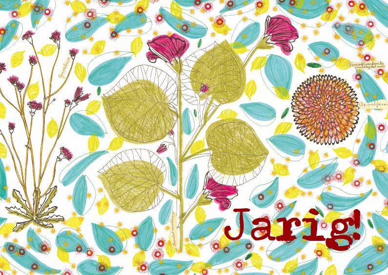 jarig2 1