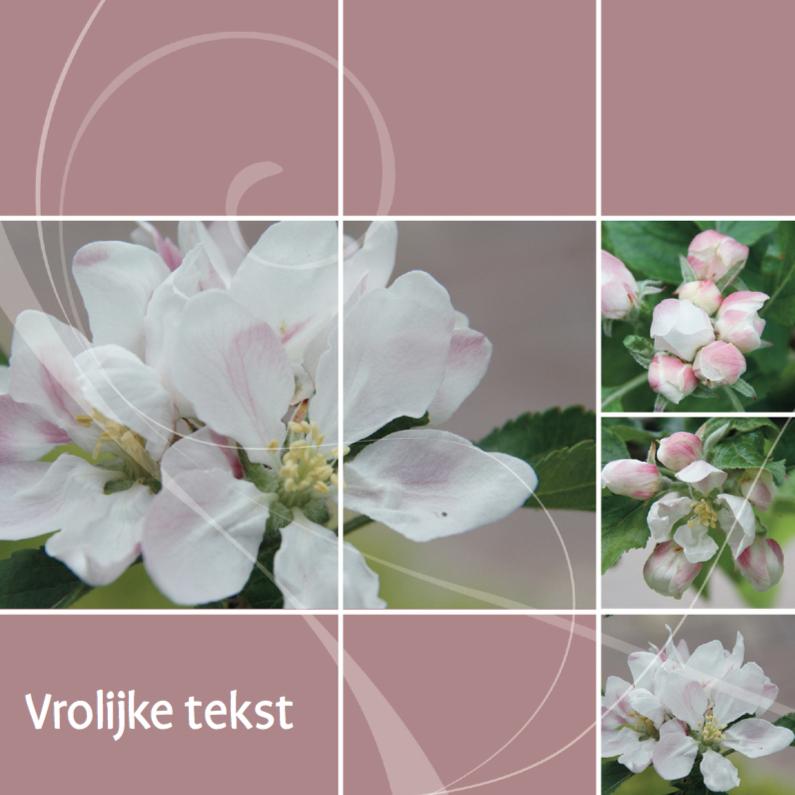 Jubileumkaart openen bloesem 1