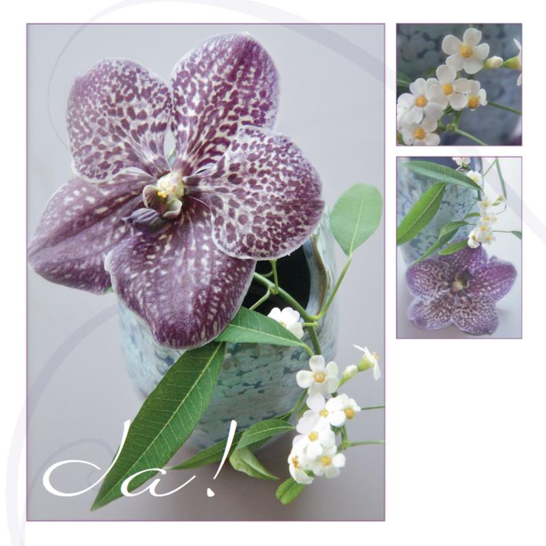 Jubileumkaart orchidee paars 1