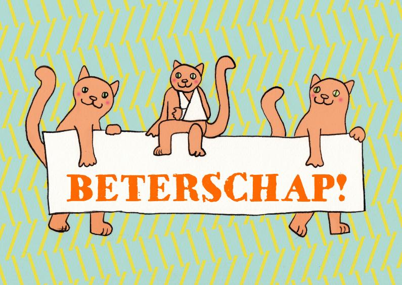 katten met bord 1
