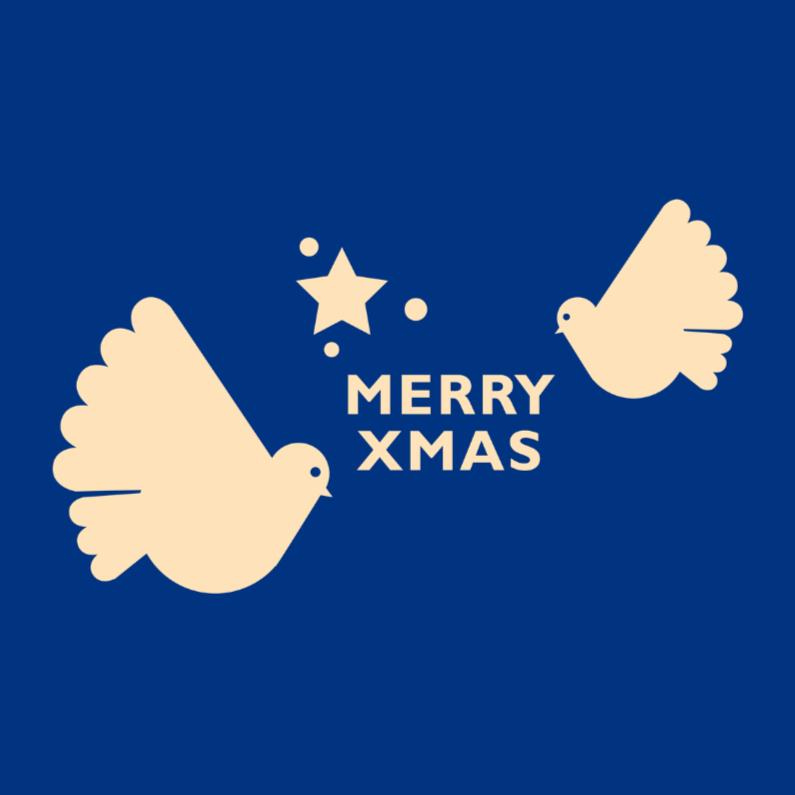 Kerst retro 22 duif en ster 1