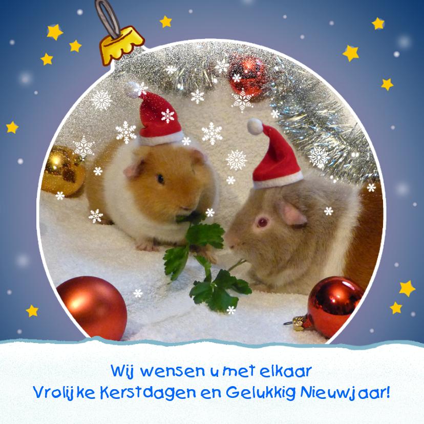 Kerst Sneeuwbol 1