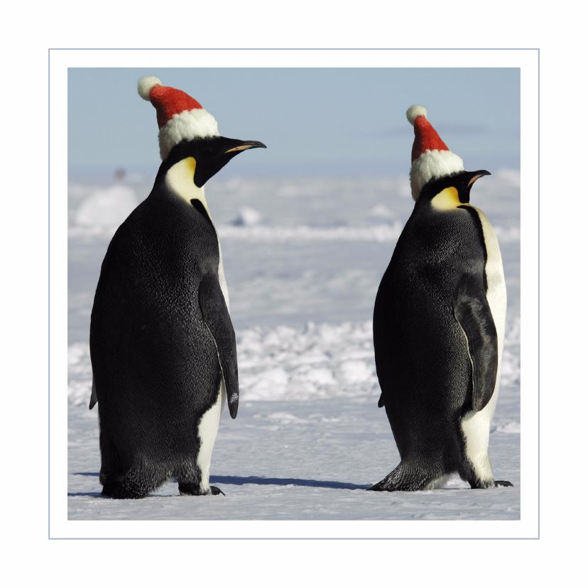 Kerstkaart Pinguins met kerstmutsjes 1