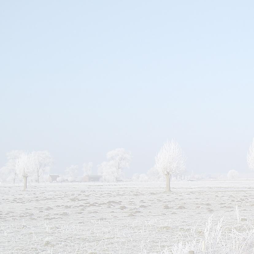 kerstkaart winterlandschap bomen 2