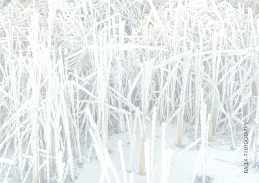 Kerstkaart Wintersfeer 3