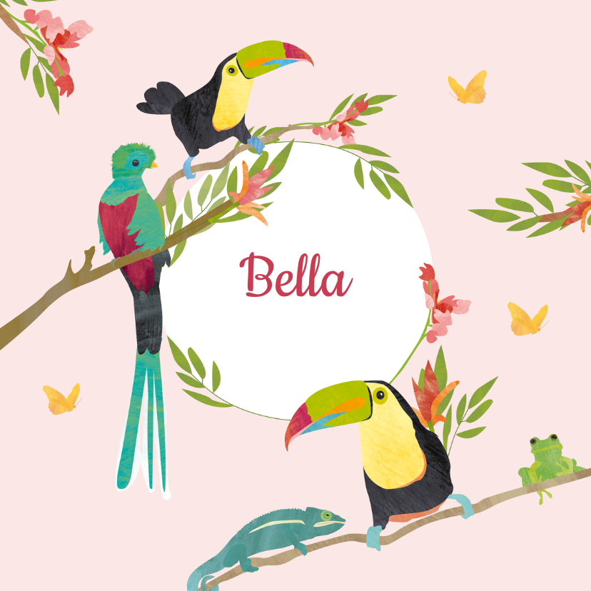 Kleurrijk geboortekaartje vogels 1