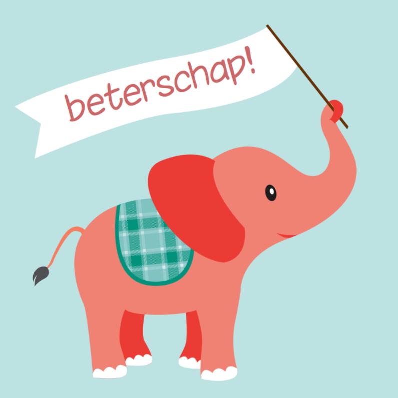 olifant beterschap 1