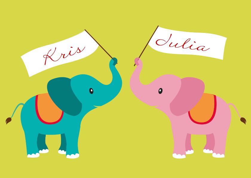 olifant tweeling jongen meisje 1