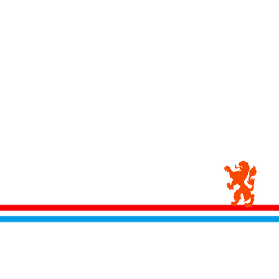 Oranje geboortekaart met de oranje leeuw 3