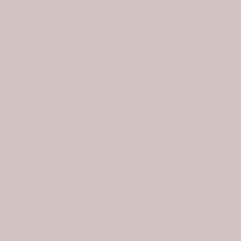 Ranonkels vier kleuren 2
