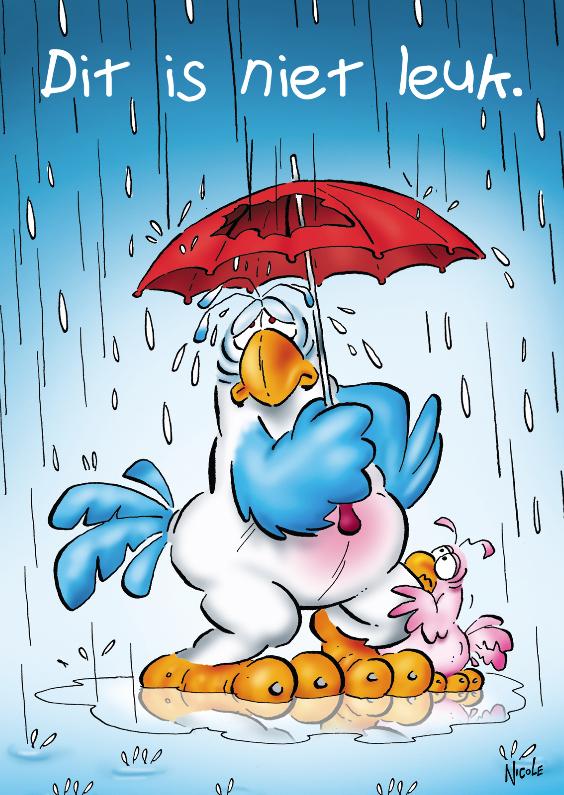 rocco beterschap 3 papegaai paraplu 1