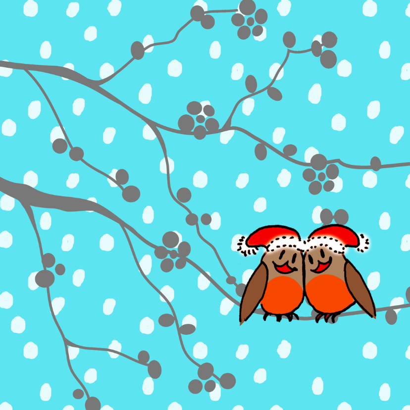 roodborstjes in de sneeuw 1