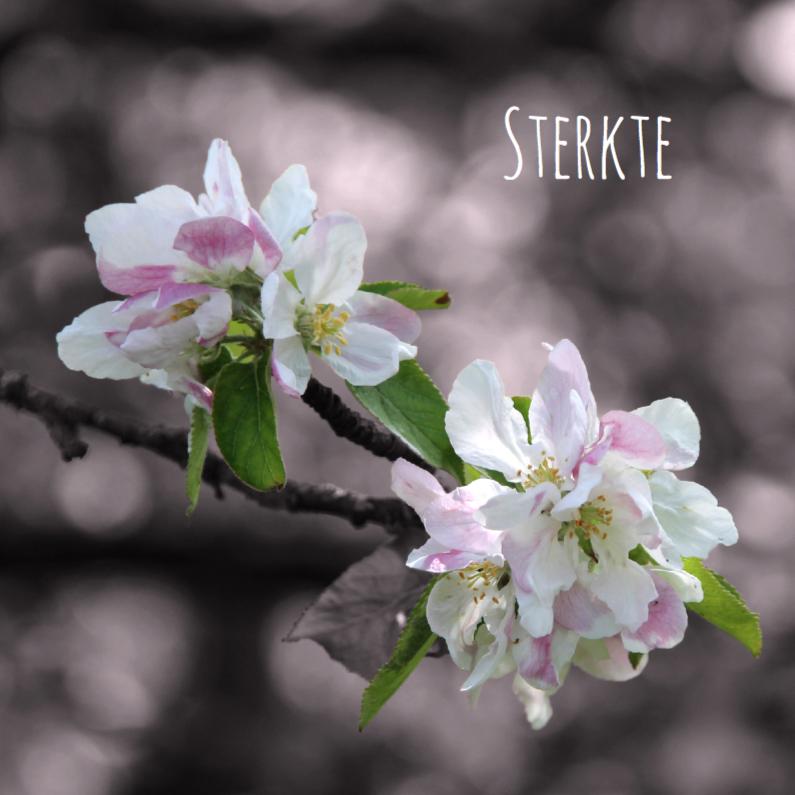 Rouwkaart sfeervolle bloemen
