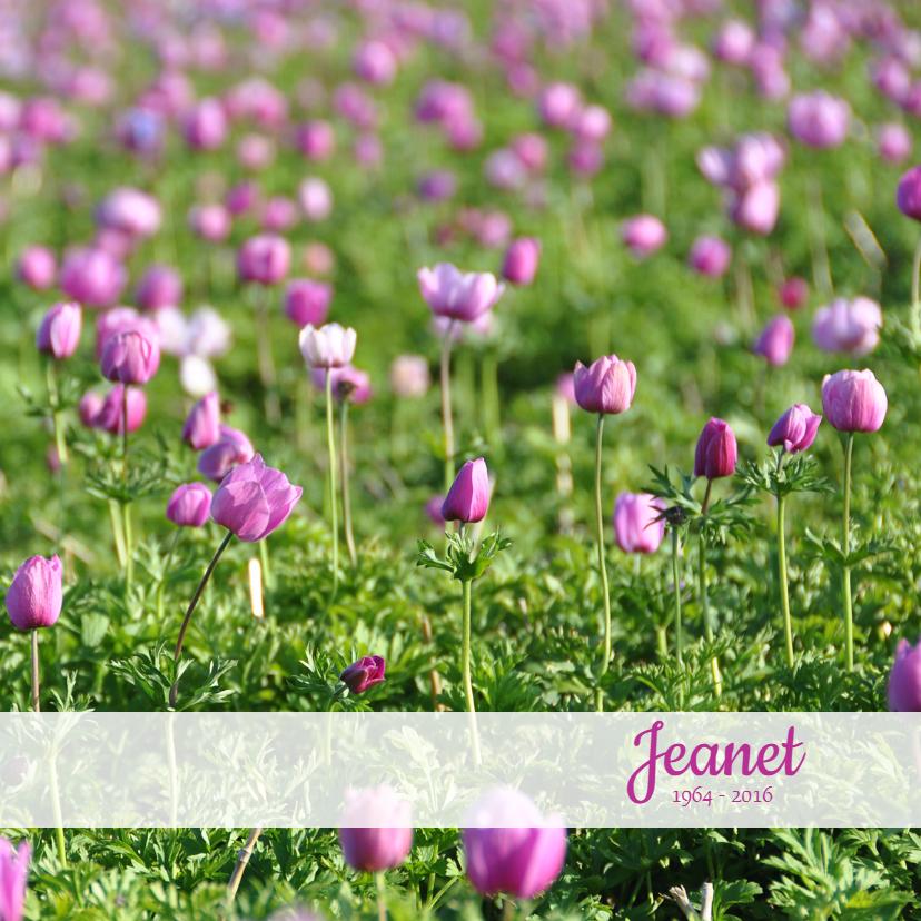 Rouwkaart Veld met roze bloemen