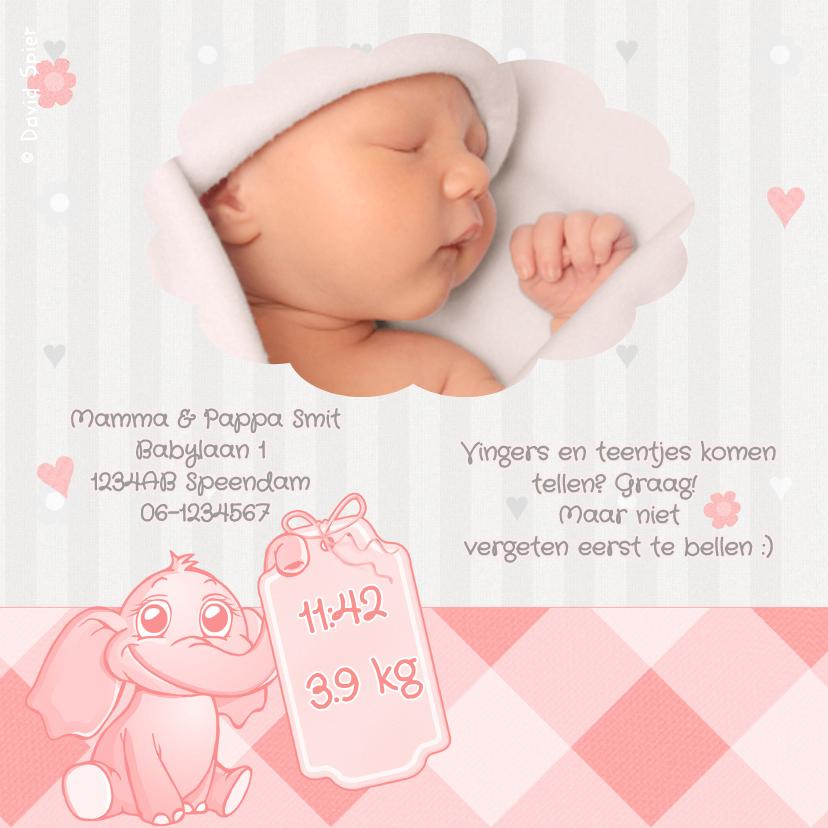 Roze Baby Olifantje Met Speen 2