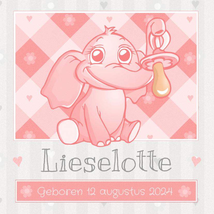 Roze Baby Olifantje Met Speen 1