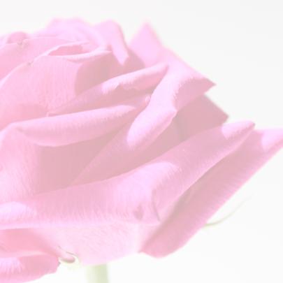 Sara FEEST met Roze roos 3