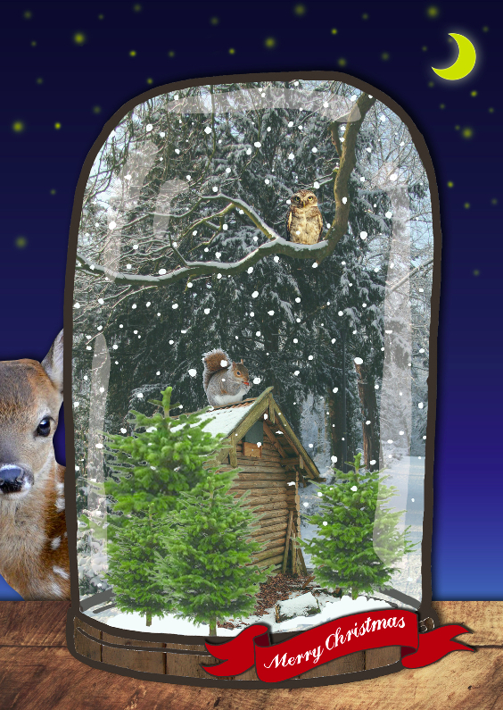 Sneeuwbol kerst bos 1 1